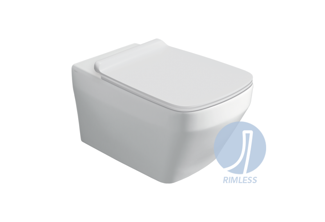 """Rimless"" wall hung WC BB 18"